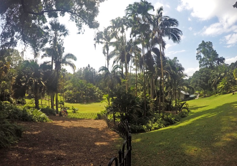 Palm Valley Botanical garden