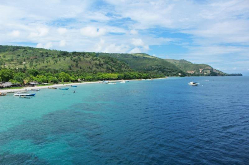 Ataúro koraly