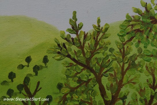 Pomagranet tree 6