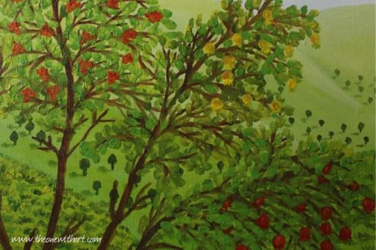 Pomagranet tree 8