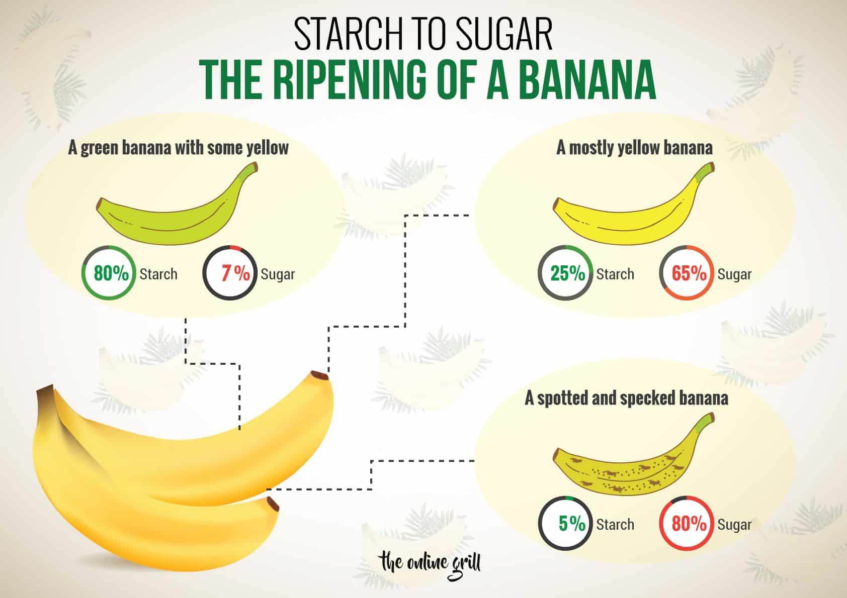 starch and sugar content in bananas