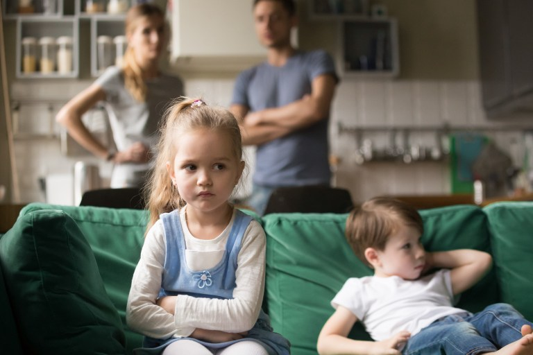 Family Theory Is An Important Consideration In Codependency And Shame