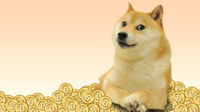 dogecoin doge price is raising will the increase the oofy