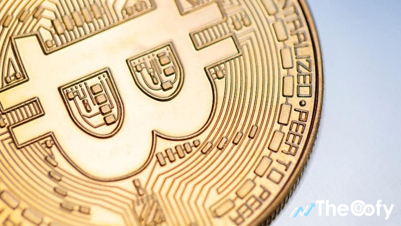 Cryptocurrency market sees a loss of 13 to 14 percent