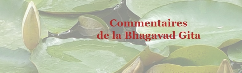 Commentaires Gita
