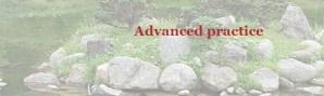 GB-Advanced practice