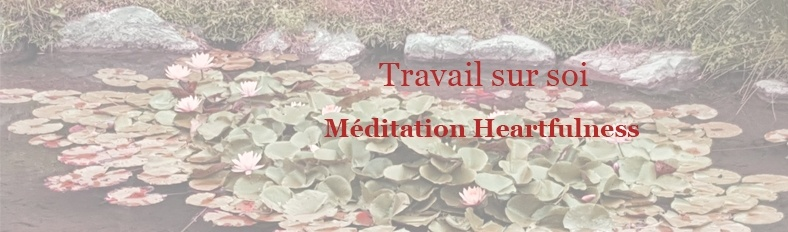 Travail sur soi Méditation Heartfulness