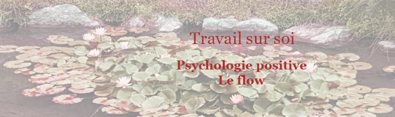 Travail sur soi Psychologie positive flow