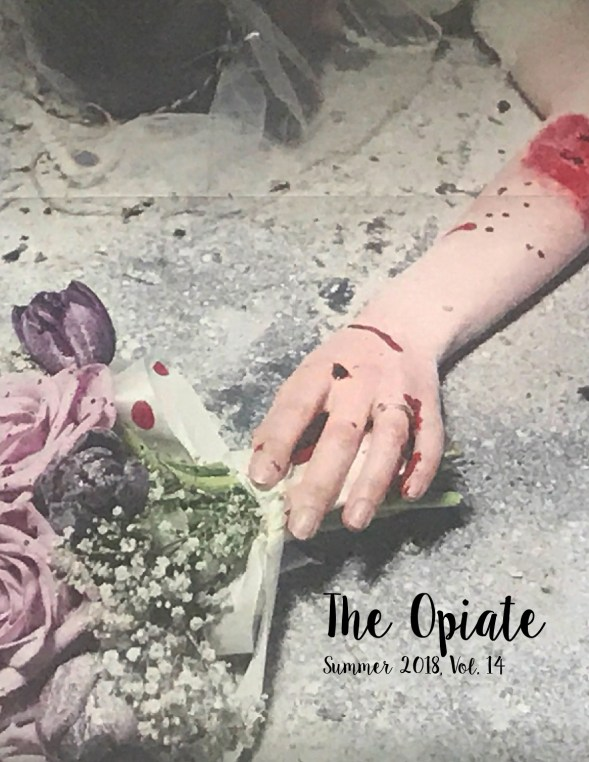 Issue 14, Summer 2018. Cover art: Genna Rivieccio