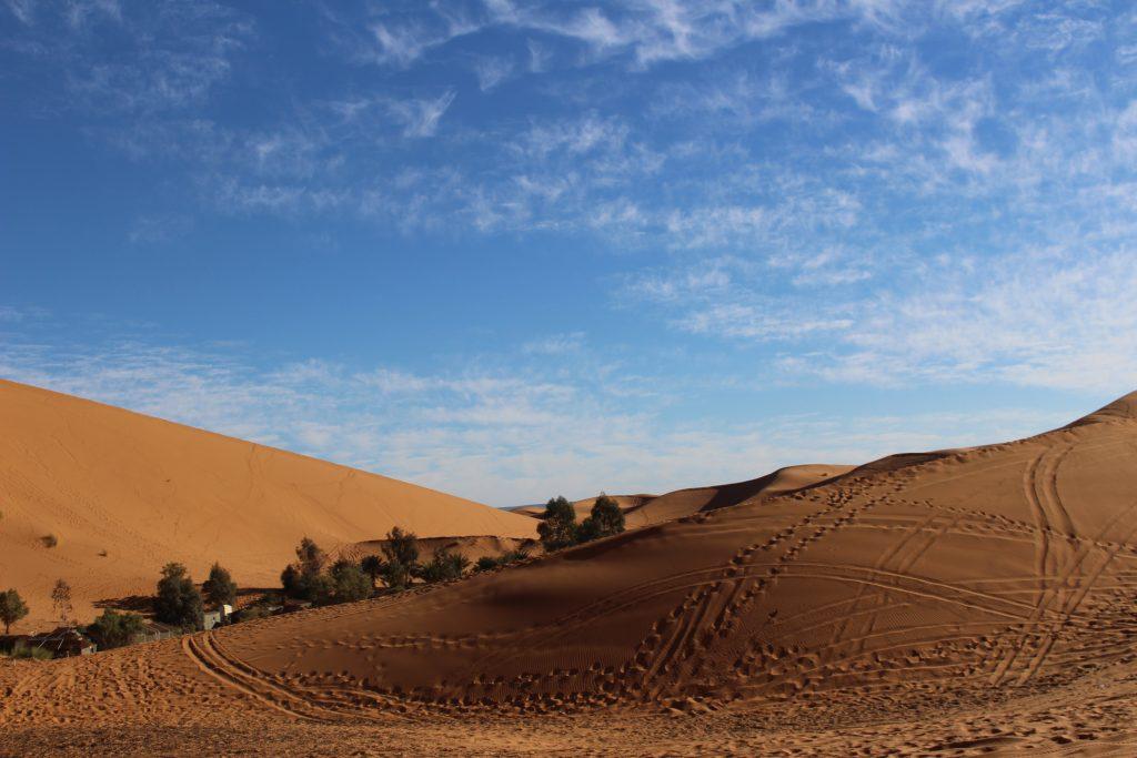 Dagtrips vanuit Marrakech | Marokko | The Orange Backpack