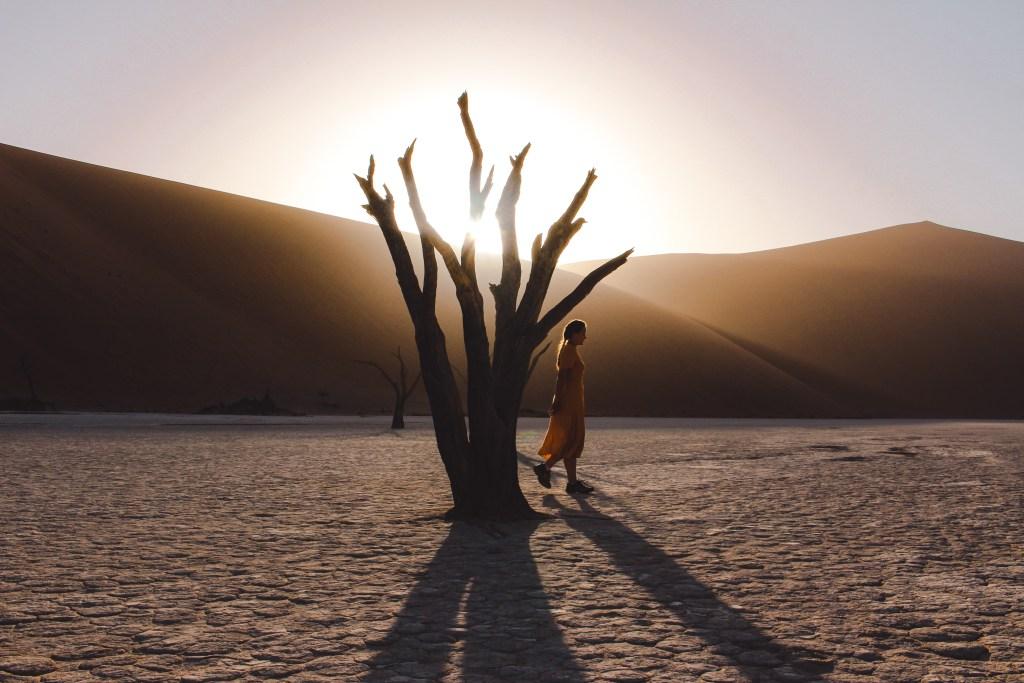 Sossusvlei | Namibië | De oranje rugzak