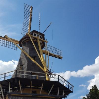 Rotterdam | Kralings Plas | The Orange Backpack