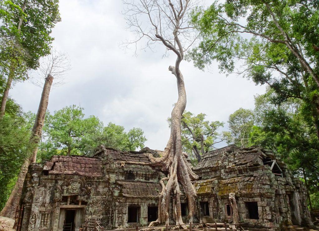 Cambodja | Angkor Wat | The Orange Backpack