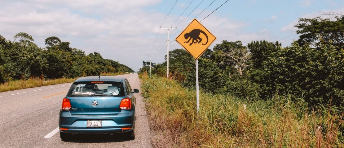 Tips for a rental car and driving in Mexico