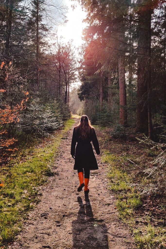 Veluwe | The Orange Backpack
