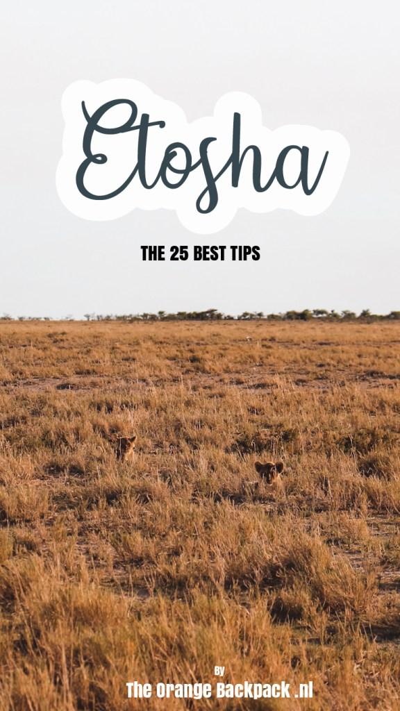 Etosha National Park Namibia
