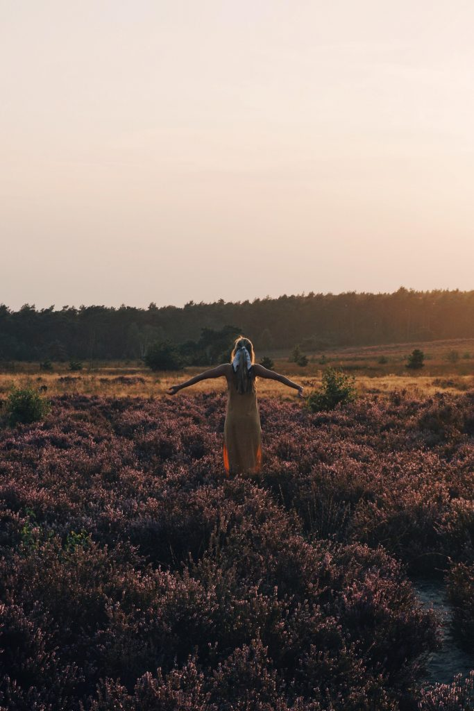 TheZeroHourWorkweek recommends the Veluwe as the most beautiful place in the Netherlands according to Dutch travel bloggers