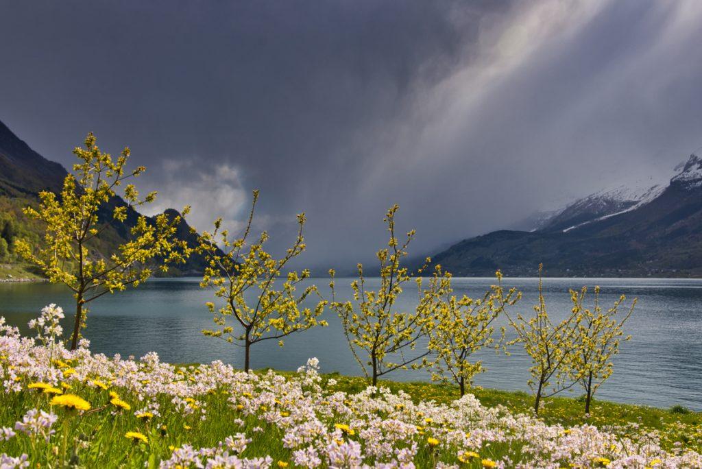 Roadtrip Europa Noorwegen Hardangerfjord_Norway_Realcamplife