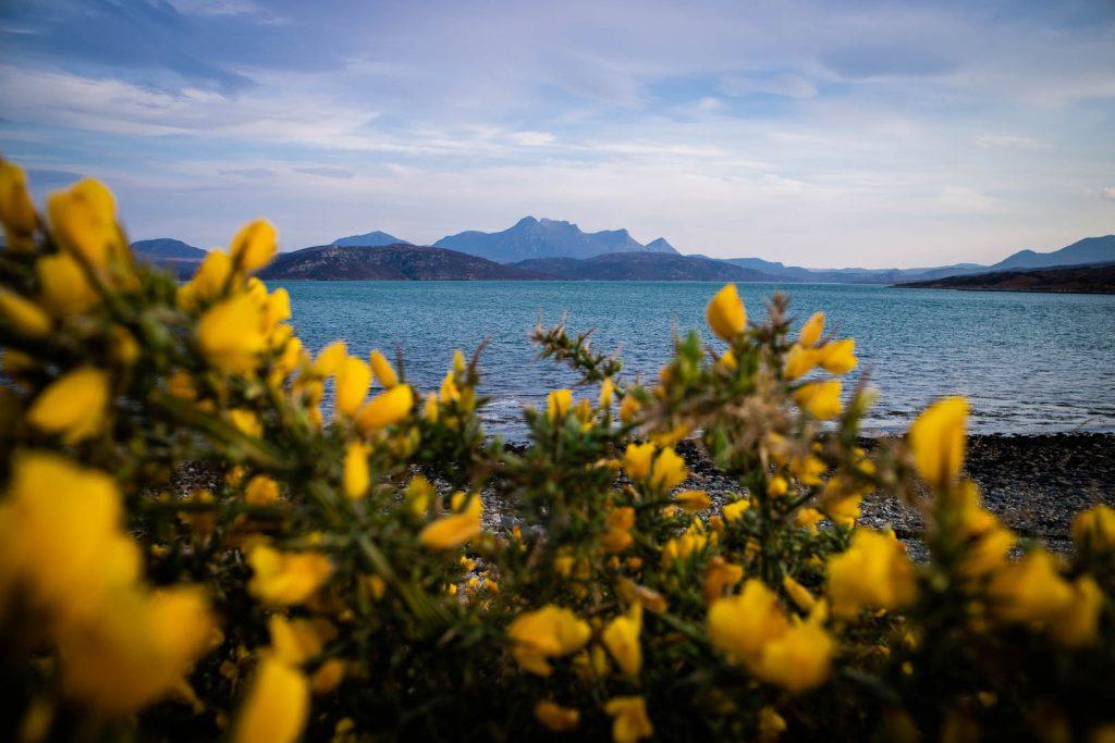 Europa Road Trip Schotland bergen in de buurt van Tongue - Foto door Kathi Kamleitner, Watch Me See