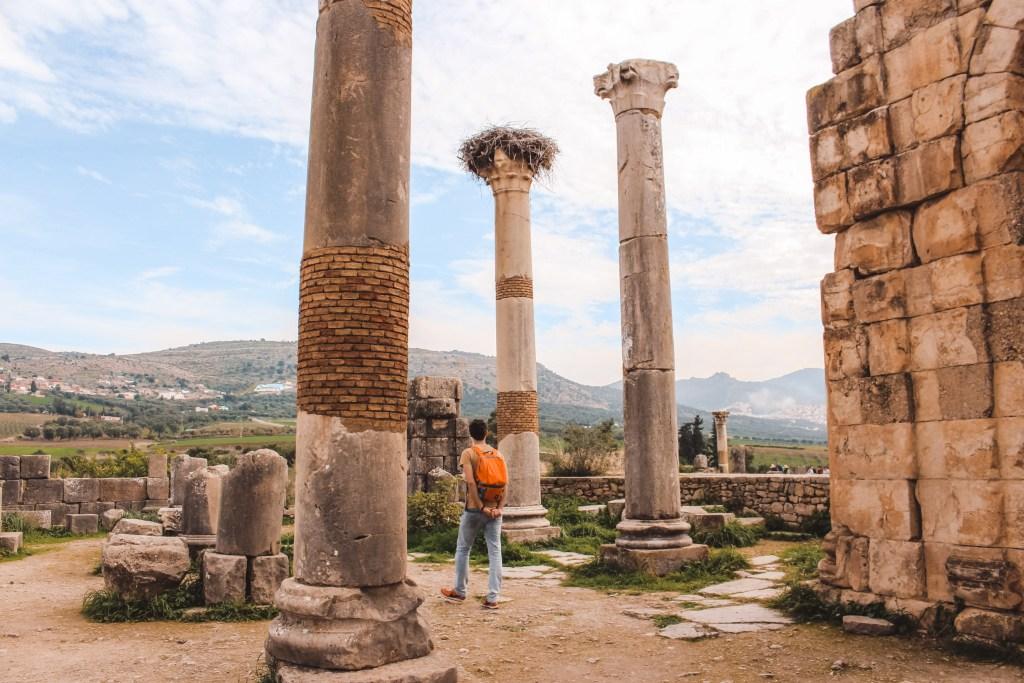 Lost city ancient Roman ruins Volubilis Morocco | Round trip Morocco