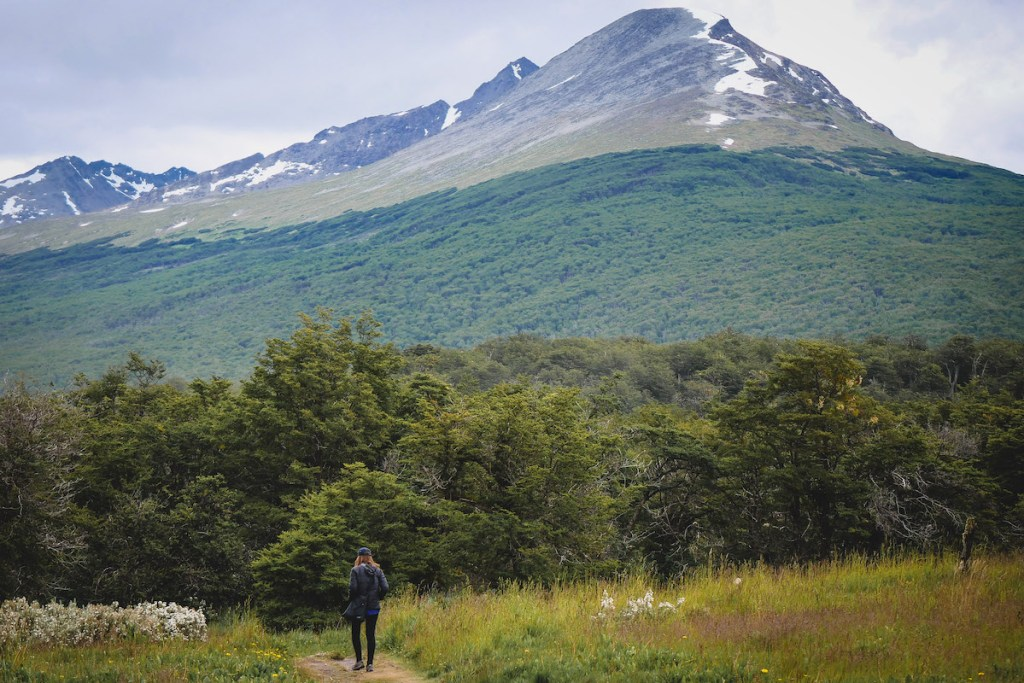 best hikes in Patagonia | Senda Costera, half-day hike in Tierra del Fuego National Park