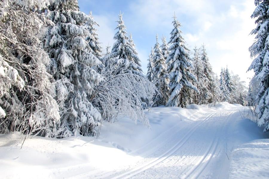 Oslo in de winter | Beste stad van Europa om in de winter te bezoeken