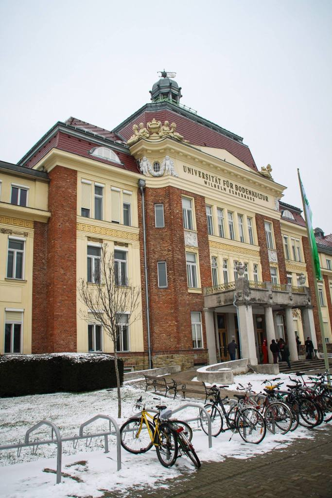 Wenen | beste winter stedentrip in Europa
