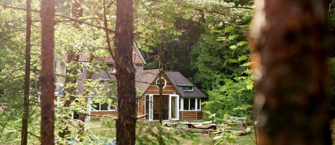 Uniek boshuisje huren: 16 afgelegen natuurhuisjes in Nederland