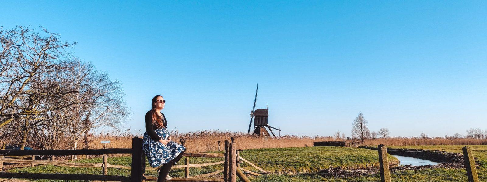 Lek- en Lingeroute: landelijke autoroute door Zuid-Holland