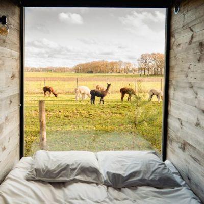 Bijzondere overnachtingen - Design Cabin