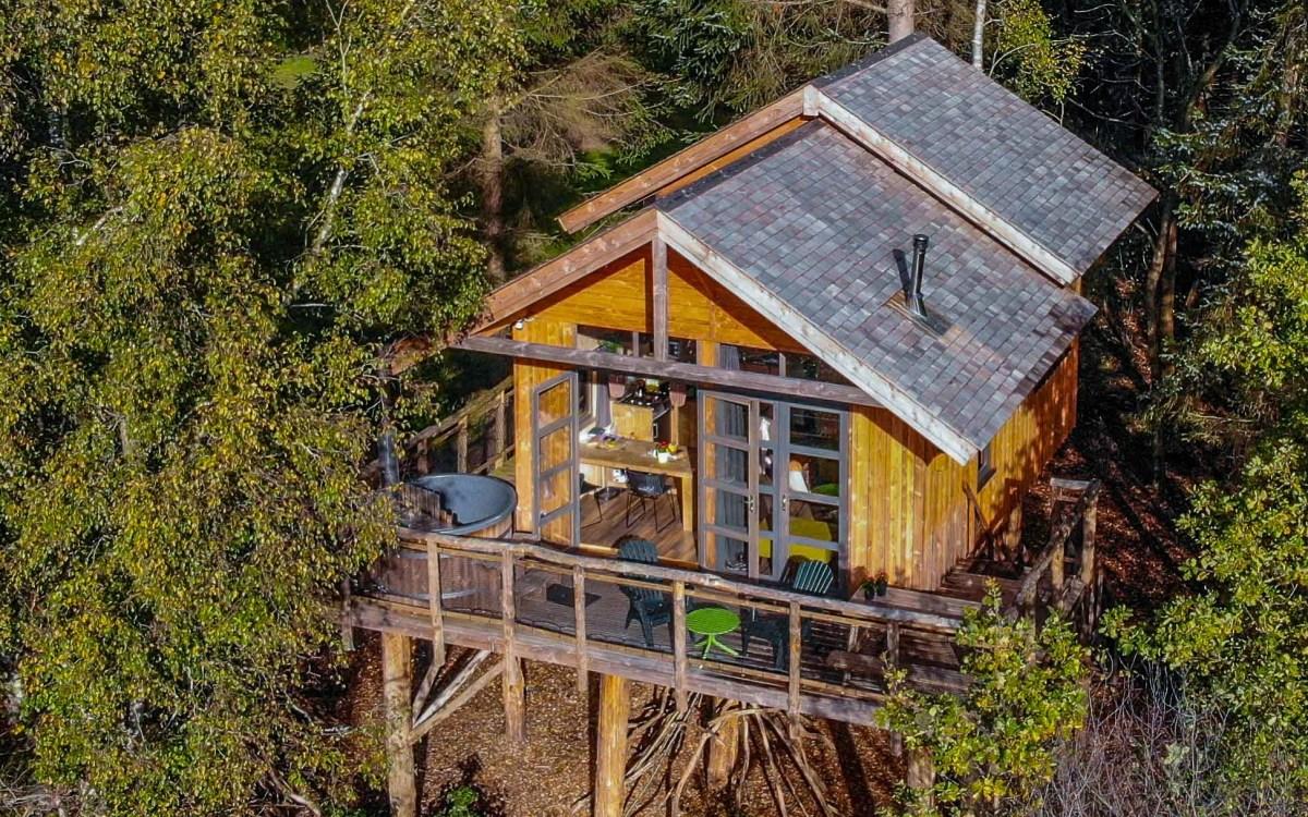 Nature House Treehouse Netherlands   Natuurhuisje Boomhut XXL in Ruinen