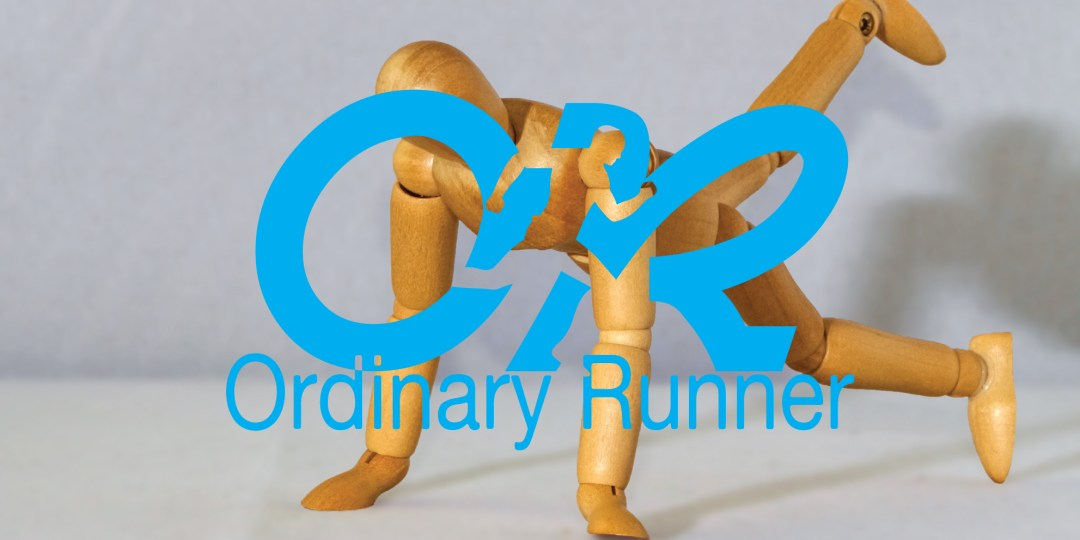 The Ordinary Runner - Running Blog - Bring Sally Up Challenge