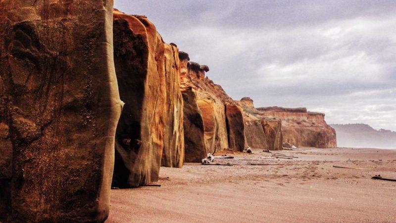 Big stones in Floras Lake State - parkrun PB