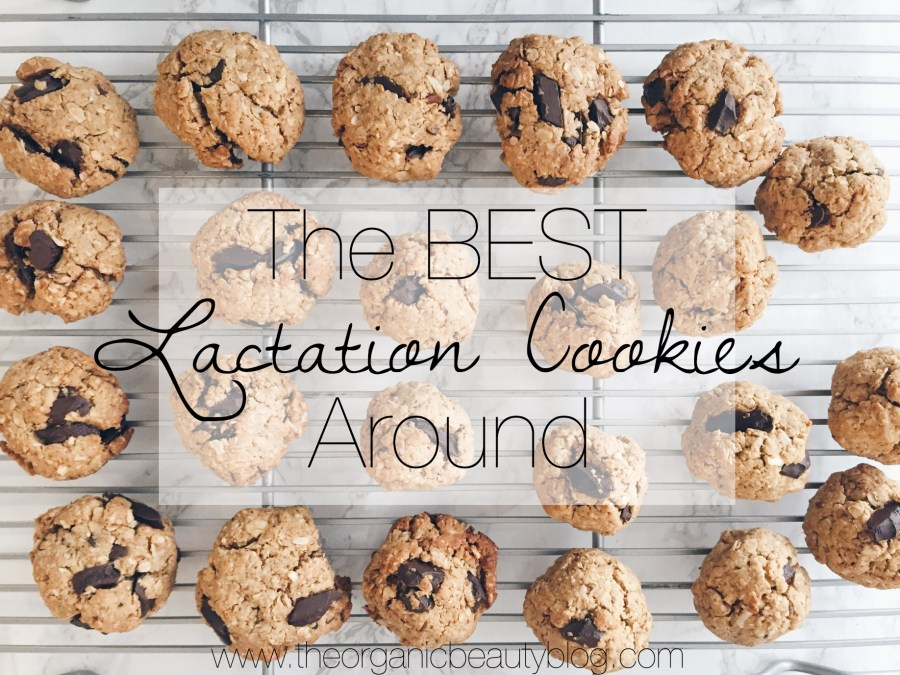 the-best-lactation-cookies-around