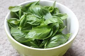 Health Benefits Of Basil Leaves