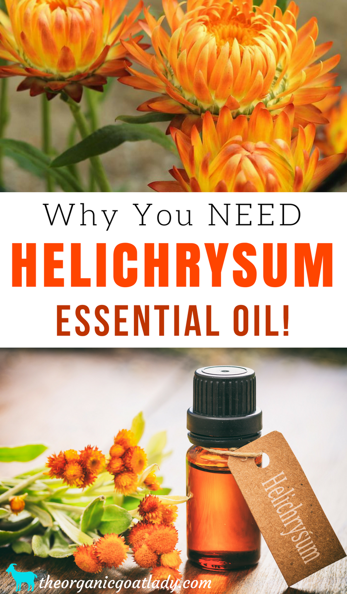 Why You Should Use Helichrysum Essential Oil The