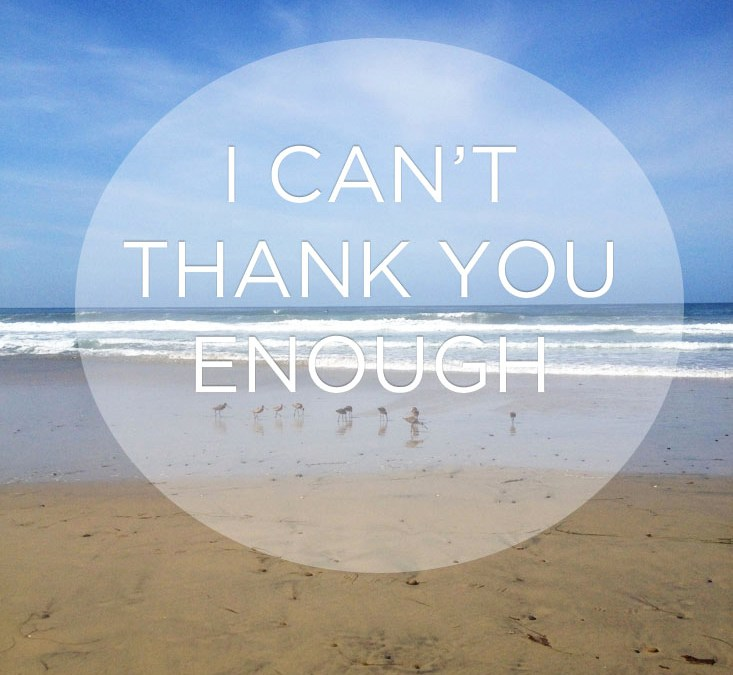 I Can't Thank You Enough…