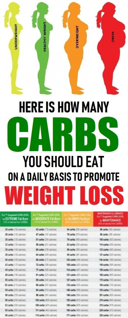 how many carbs to eat to lose weight