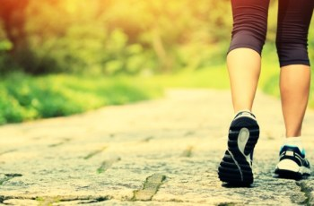 walking plan for fat loss