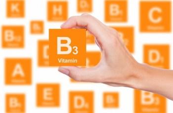 how to raise vitamin b3 levels