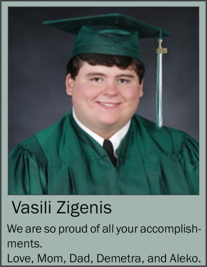 Vasilli Zegenis June 2020