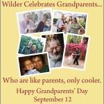 Wilder web Sept 2021