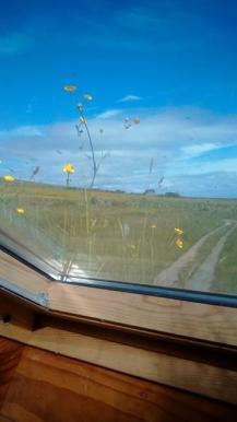 straw house window
