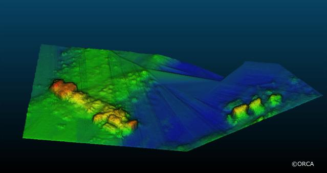 HMS Pheasant- Multibeam Echosound Image. Copyright ORCA
