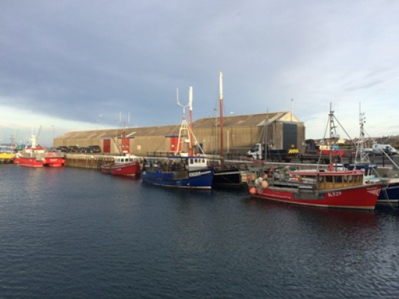 Stromness fishing boats Hannah Fennell