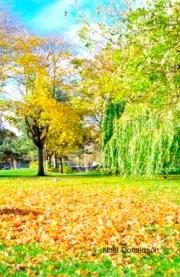 Autumn Linlithgow 6