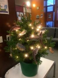 Christmas tree fishy OFA