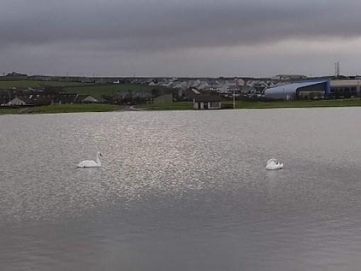 Flooding 6 Peedie Sea 10 2 19