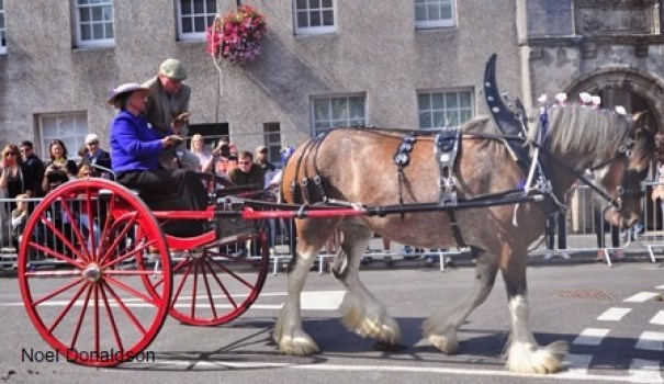 Kirkwall Marches Donaldson 2014