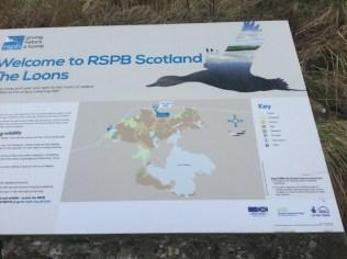EU funding RSPB The Loons